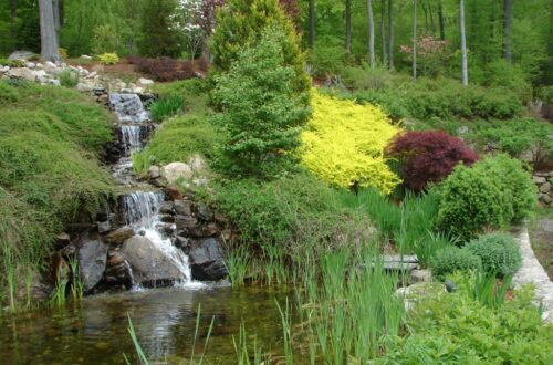 Best Landscaping Companies Near Me Wilton Ct