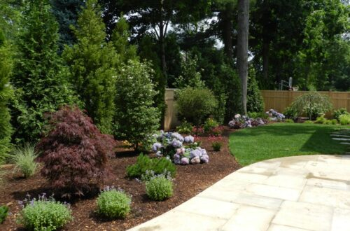 Plantings New Canaan CT